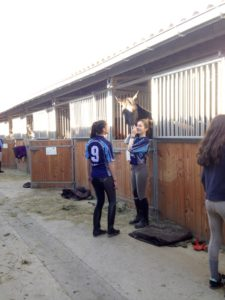 UNSS equitation
